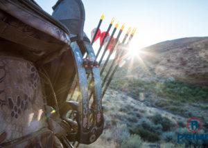 Bow hunting 2017 Season