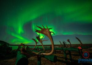 Aurora Borealis in Quebec